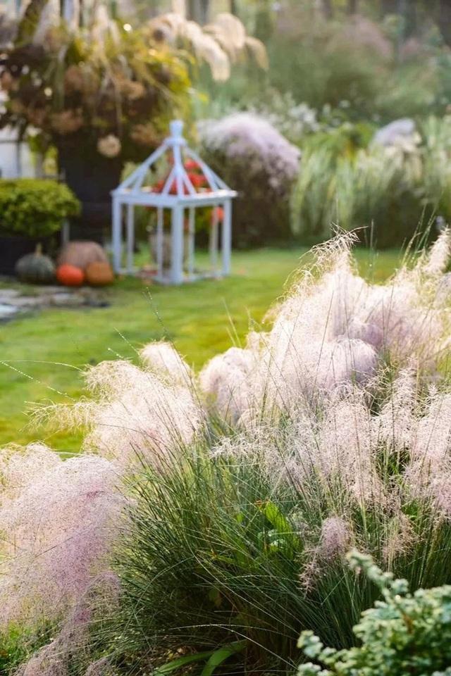 Cặp vợ chồng trẻ dành 5 năm để biến khu đất hoang rộng 6000m² thành khu vườn thiên đường của cỏ cây, hoa lá - Ảnh 17.