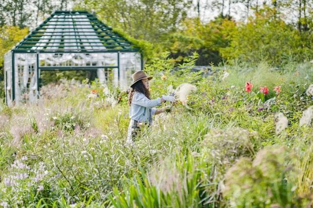 Cặp vợ chồng trẻ dành 5 năm để biến khu đất hoang rộng 6000m² thành khu vườn thiên đường của cỏ cây, hoa lá - Ảnh 23.