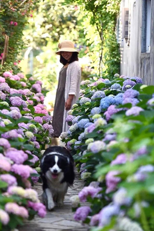 Cặp vợ chồng trẻ dành 5 năm để biến khu đất hoang rộng 6000m² thành khu vườn thiên đường của cỏ cây, hoa lá - Ảnh 25.