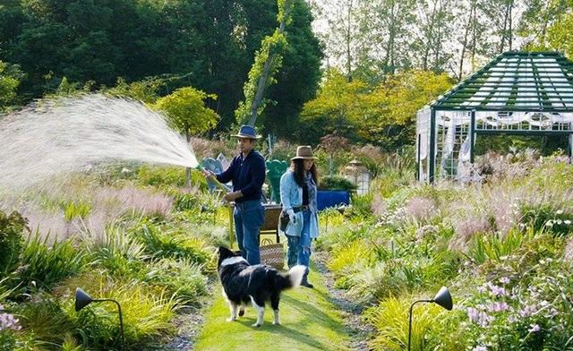 Cặp vợ chồng trẻ dành 5 năm để biến khu đất hoang rộng 6000m² thành khu vườn thiên đường của cỏ cây, hoa lá - Ảnh 30.