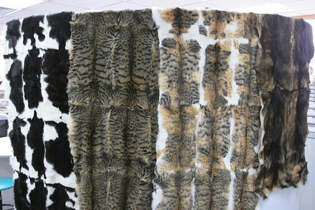 Nở rộ ngành công nghiệp lông mèo tàn bạo tại Trung Quốc khiến hàng trăm nghìn người yêu động vật thế giới xót xa - Ảnh 4.