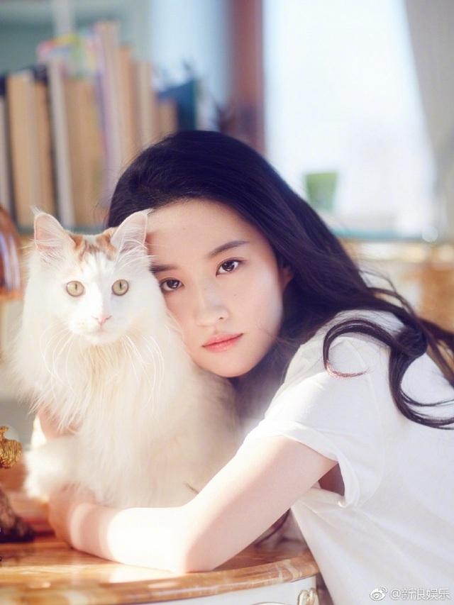 Trung Quốc: Thà nuôi chó mèo còn hơn kết hôn - Ảnh 2.