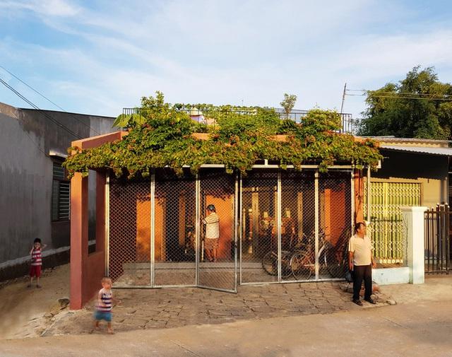 Vườn rau 7 bậc thang xanh tươi trên mái nhà của vợ chồng trung niên được các con xây tặng ở Quảng Ngãi - Ảnh 13.