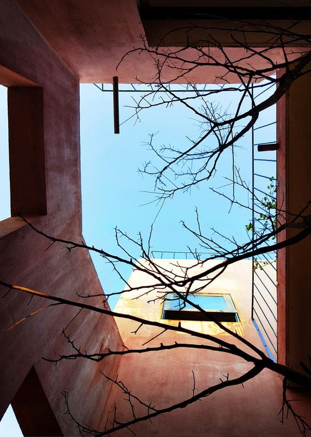 Vườn rau 7 bậc thang xanh tươi trên mái nhà của vợ chồng trung niên được các con xây tặng ở Quảng Ngãi - Ảnh 17.