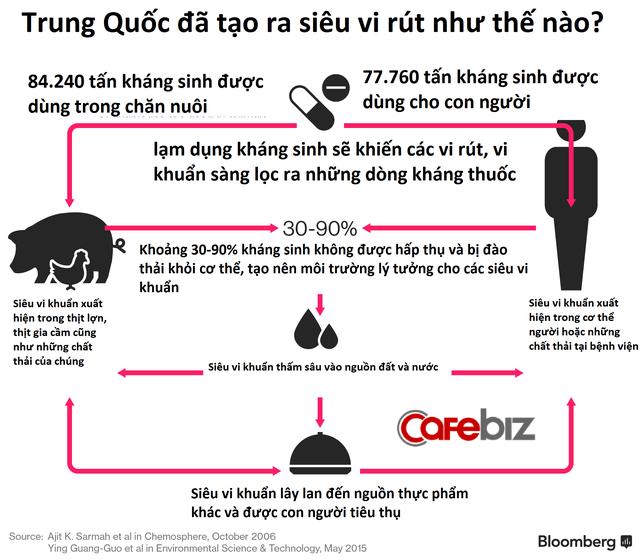 Thịt lợn tiêm kháng sinh Trung Quốc và những hệ luỵ khiến thế giới lo sợ - Ảnh 2.