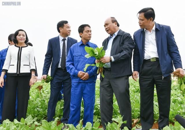 Xông đất ngành nông nghiệp, Thủ tướng kỳ vọng vào đòn bẩy chiến lược của Việt Nam - Ảnh 1.