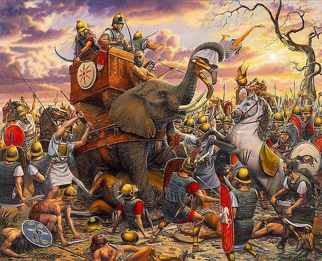 Câu chuyện về War Pig và Pig War và : từ những con lợn quật ngã cả voi, đến nguy cơ gây đại chiến giữa 2 cường quốc - Ảnh 3.