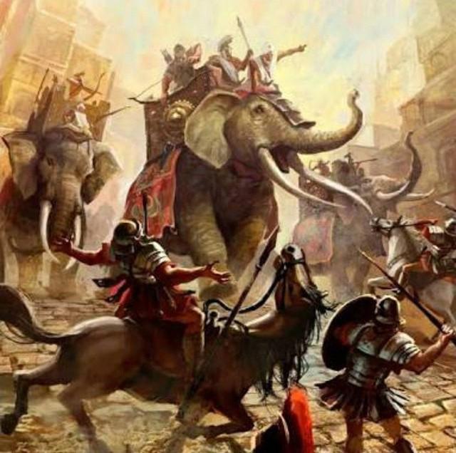 Câu chuyện về War Pig và Pig War và : từ những con lợn quật ngã cả voi, đến nguy cơ gây đại chiến giữa 2 cường quốc - Ảnh 4.