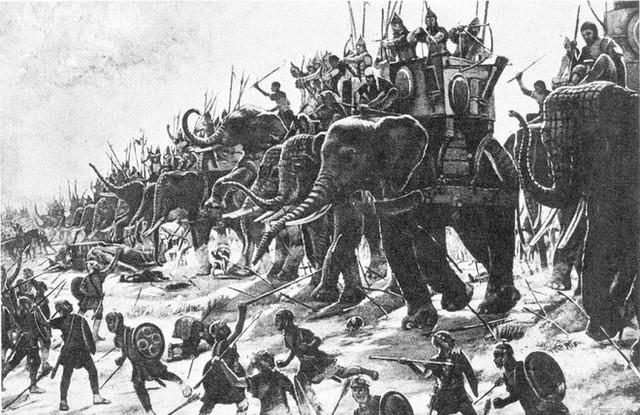 Câu chuyện về War Pig và Pig War và : từ những con lợn quật ngã cả voi, đến nguy cơ gây đại chiến giữa 2 cường quốc - Ảnh 6.