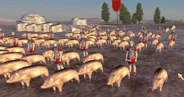 Câu chuyện về War Pig và Pig War và : từ những con lợn quật ngã cả voi, đến nguy cơ gây đại chiến giữa 2 cường quốc - Ảnh 8.