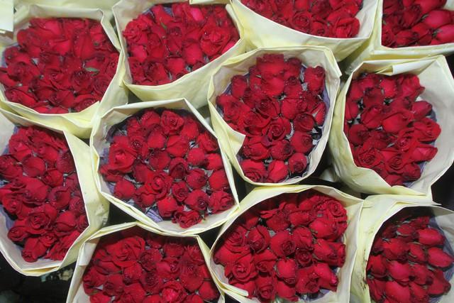 Đây là lý do những bông hồng Valentine đang giết Trái Đất, hãy trở thành một người tặng quà sáng suốt! - Ảnh 1.
