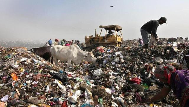 Nghệ thuật xử lý rác ở đất nước siêu sạch Singapore: 90% rác biến thành điện, 10% trở thành đảo du lịch - Ảnh 4.