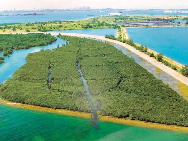 Nghệ thuật xử lý rác ở đất nước siêu sạch Singapore: 90% rác biến thành điện, 10% trở thành đảo du lịch - Ảnh 6.