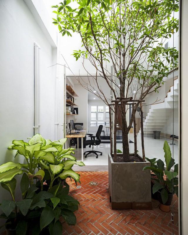 Sau 15 năm bỏ hoang, ngôi nhà 300m² được cặp vợ chồng trẻ hồi sinh cực hiện đại lại có vườn bonsai đáng mơ ước ở ban công - Ảnh 6.