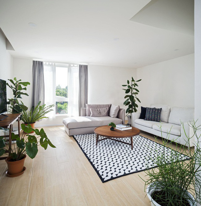 Sau 15 năm bỏ hoang, ngôi nhà 300m² được cặp vợ chồng trẻ hồi sinh cực hiện đại lại có vườn bonsai đáng mơ ước ở ban công - Ảnh 8.