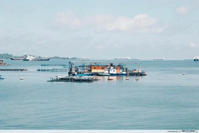 Nghệ thuật xử lý rác ở đất nước siêu sạch Singapore: 90% rác biến thành điện, 10% trở thành đảo du lịch - Ảnh 9.