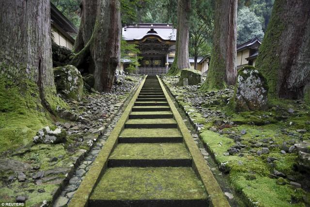 Vì sao không nhận tiền cúng bái, không có sư trụ trì nhưng hàng chục nghìn ngôi chùa tại Nhật vẫn tồn tại tới hàng trăm năm ? - Ảnh 1.