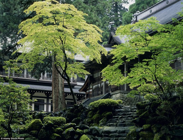 Vì sao không nhận tiền cúng bái, không có sư trụ trì nhưng hàng chục nghìn ngôi chùa tại Nhật vẫn tồn tại tới hàng trăm năm ? - Ảnh 4.