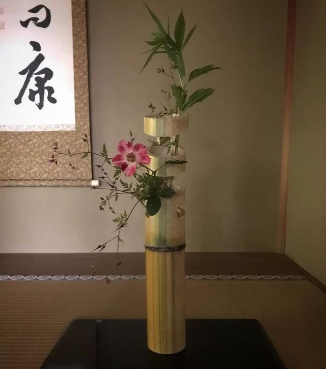 Sau 10 năm ẩn dật, người phụ nữ Nhật Bản trở thành kho báu quốc gia khi được mọi người mệnh danh là bậc thầy cắm hoa - Ảnh 20.