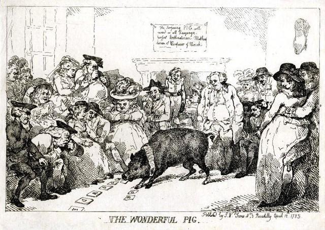 Những chú lợn ghi dấu ấn trong lịch sử - Ảnh 1.