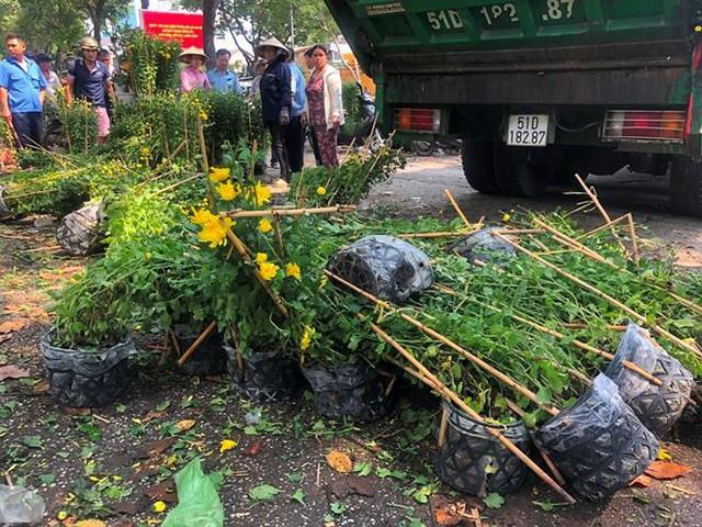 Tiểu thương vứt hàng trăm chậu hoa ế vào xe rác vì sợ hôi của - Ảnh 2.