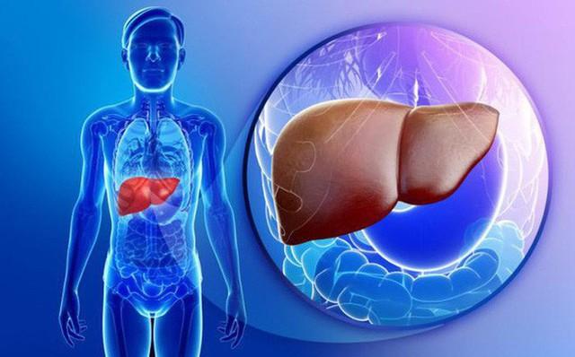 Chuyên gia ngành gan mật chia sẻ bí quyết thải độc cứu lá gan ngày Tết - Ảnh 1.