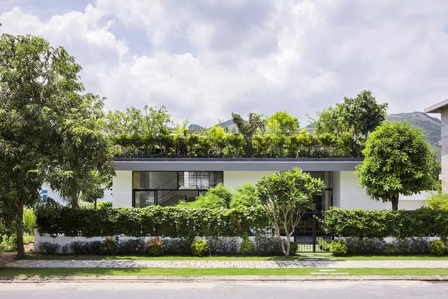 Ngôi nhà có vườn treo tại Nha Trang - Ảnh 2.