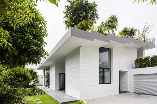 Ngôi nhà có vườn treo tại Nha Trang - Ảnh 4.