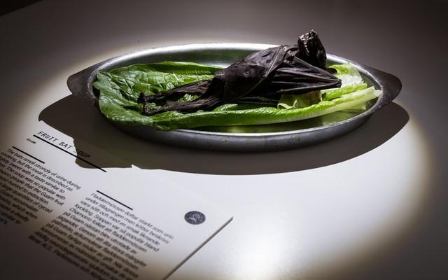 Bảo tàng kỳ lạ tại Thụy Điển: Trưng bày những thức ăn kinh dị nhất thế giới - Ảnh 6.