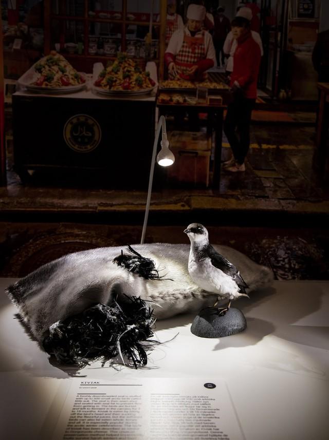 Bảo tàng kỳ lạ tại Thụy Điển: Trưng bày những thức ăn kinh dị nhất thế giới - Ảnh 10.
