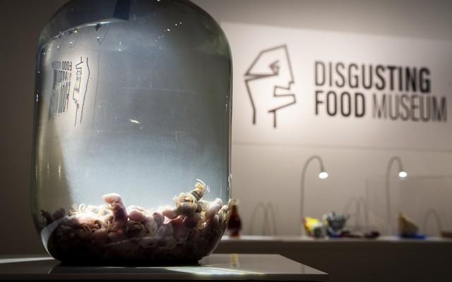 Bảo tàng kỳ lạ tại Thụy Điển: Trưng bày những thức ăn kinh dị nhất thế giới - Ảnh 13.