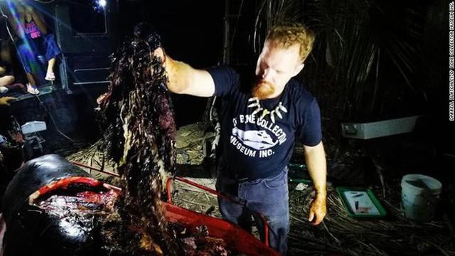 Giới khoa học bàng hoàng phát hiện đến 40kg rác nhựa trong bụng cá voi con dạt vào bờ biển Philippines - Ảnh 3.