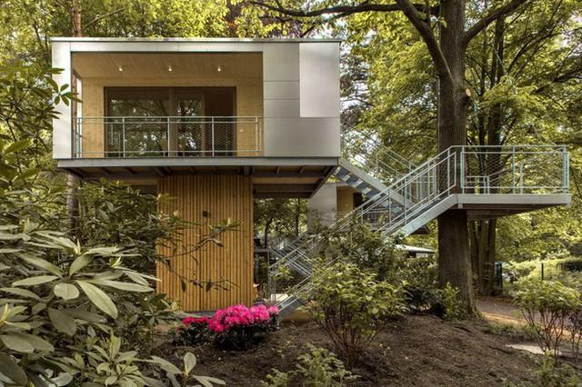 Ngắm ngôi nhà trên cây đẹp lãng mạn giữa đồi núi mênh mông - Ảnh 2.