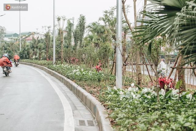 Đường đi bộ ven sông Tô Lịch: Xe máy phi ầm ầm dù có biển cấm, xe đạp vượt 3 hàng rào sắt trong ức chế - Ảnh 20.