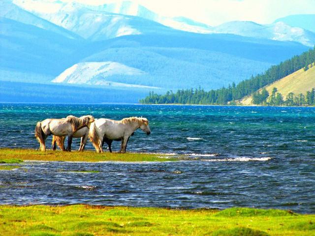 Lễ hội trên hồ đóng băng kỳ lạ của người Mông Cổ: Lạnh kinh hoàng nhưng đẹp đến mê mẩn - Ảnh 1.