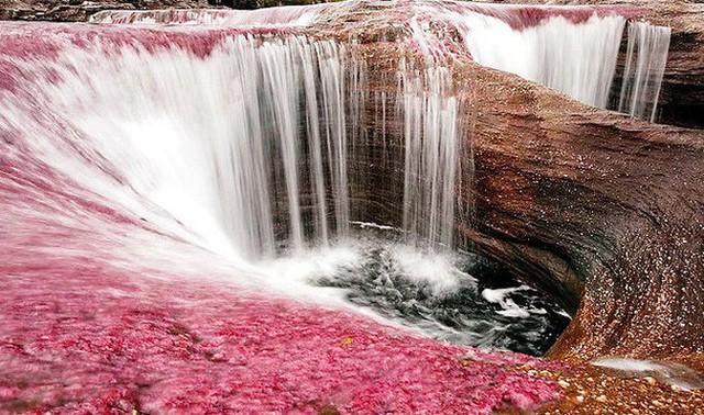 Đây là con sông đẹp nhất thế giới: Lung linh 5 màu sắc, được mệnh danh là cầu vồng sống vi diệu nhất - Ảnh 12.
