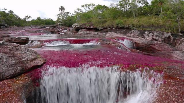 Đây là con sông đẹp nhất thế giới: Lung linh 5 màu sắc, được mệnh danh là cầu vồng sống vi diệu nhất - Ảnh 3.