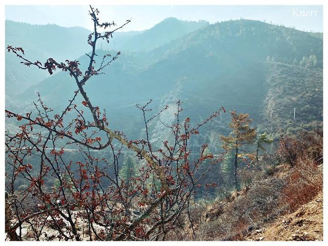 Khám phá đất nước hạnh phúc nhất thế giới: Muốn biết bình yên trông như thế nào thì hãy đến Bhutan! - Ảnh 12.