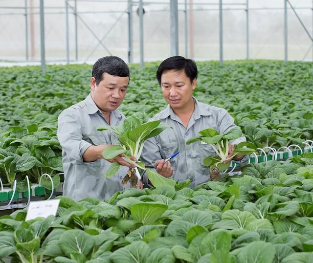 """""""VinEco muốn lan tỏa mô hình nông nghiệp công nghệ cao, thay đổi tư duy làm nông nghiệp của người Việt"""" - Ảnh 1."""