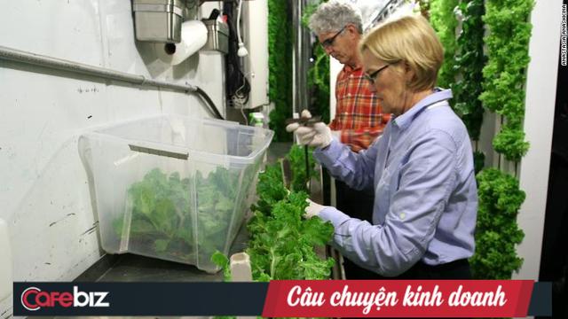 Freight Farms và công nghệ trồng rau tương lai: Không đất, không hóa chất, bất chấp thời tiết, hiệu quả gấp 80 lần và thu về 39.000 USD mỗi container - Ảnh 4.