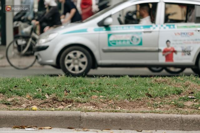 Clip bức xúc: Nhiều người dừng xe giữa đường phố Hà Nội mót hoa trang trí, lãnh đạo Công ty Công viên cây xanh lên tiếng - Ảnh 2.