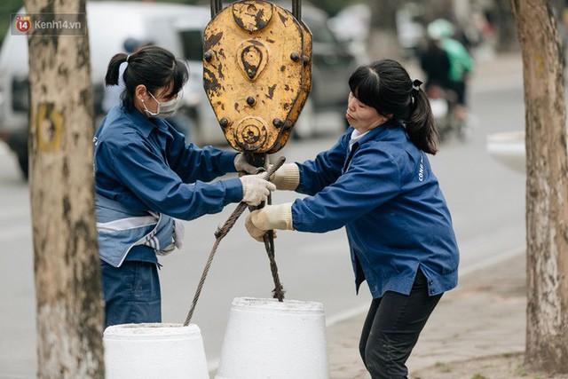 Clip bức xúc: Nhiều người dừng xe giữa đường phố Hà Nội mót hoa trang trí, lãnh đạo Công ty Công viên cây xanh lên tiếng - Ảnh 13.