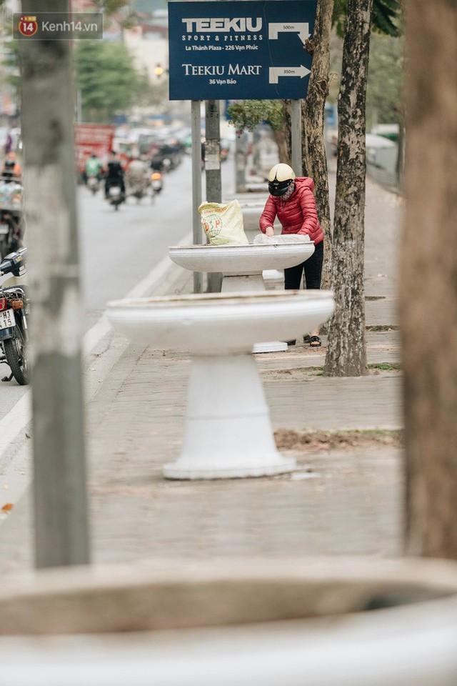 Clip bức xúc: Nhiều người dừng xe giữa đường phố Hà Nội mót hoa trang trí, lãnh đạo Công ty Công viên cây xanh lên tiếng - Ảnh 7.