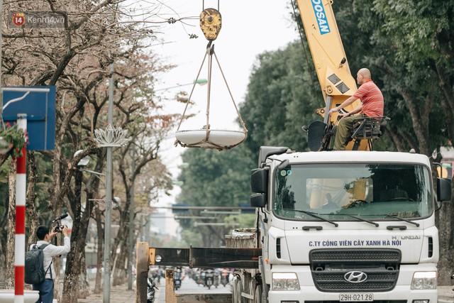 Clip bức xúc: Nhiều người dừng xe giữa đường phố Hà Nội mót hoa trang trí, lãnh đạo Công ty Công viên cây xanh lên tiếng - Ảnh 9.