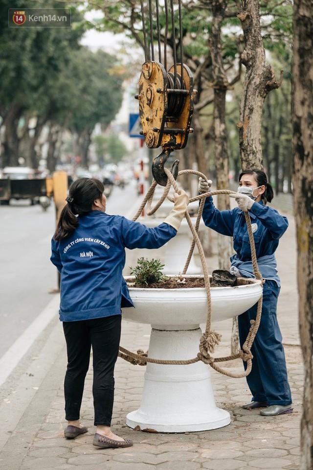 Clip bức xúc: Nhiều người dừng xe giữa đường phố Hà Nội mót hoa trang trí, lãnh đạo Công ty Công viên cây xanh lên tiếng - Ảnh 11.