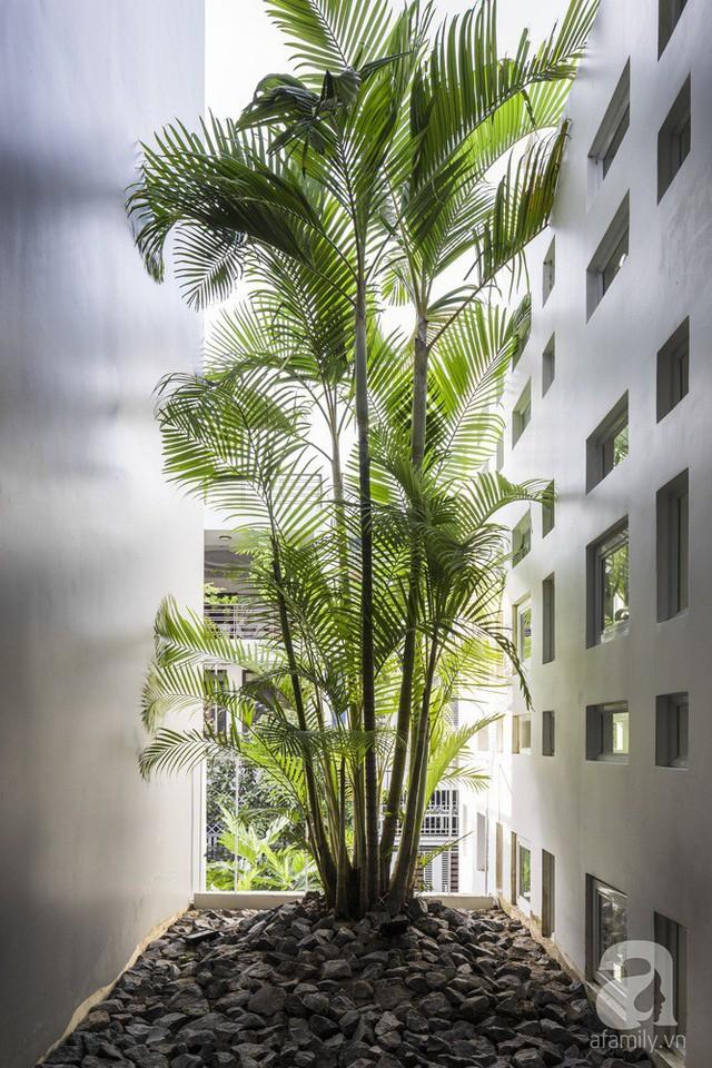 Nhờ thiết kế 300 ô cửa sổ, ngôi nhà hướng Tây ở Nha Trang luôn ngập tràn ánh sáng và gió mát - Ảnh 3.