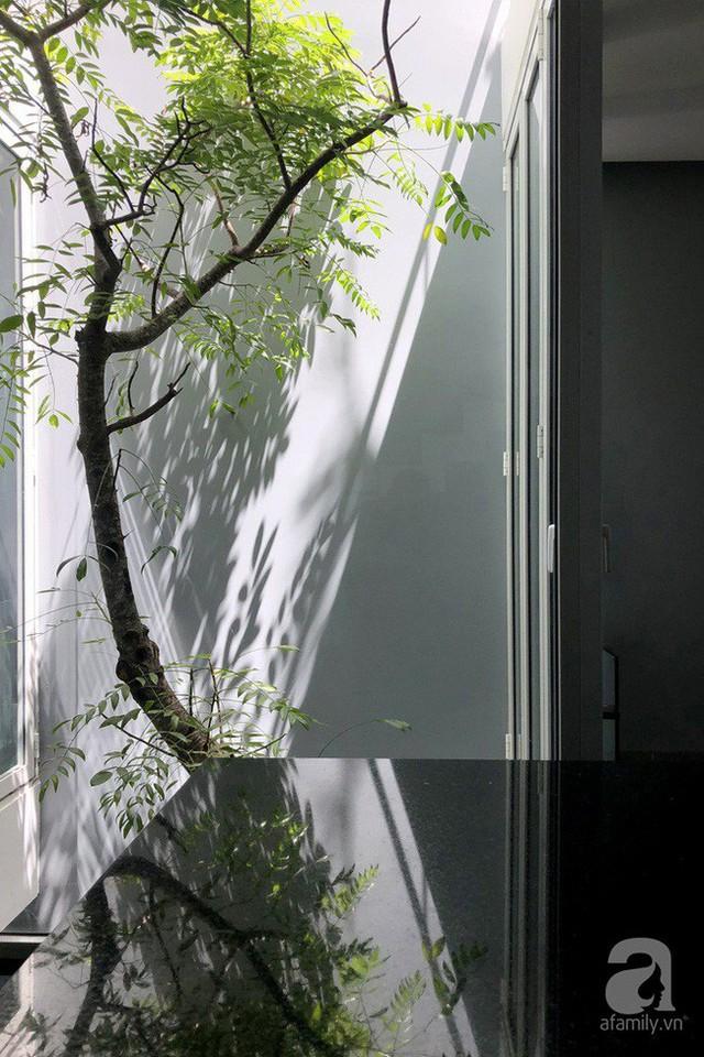 Nhờ thiết kế 300 ô cửa sổ, ngôi nhà hướng Tây ở Nha Trang luôn ngập tràn ánh sáng và gió mát - Ảnh 5.