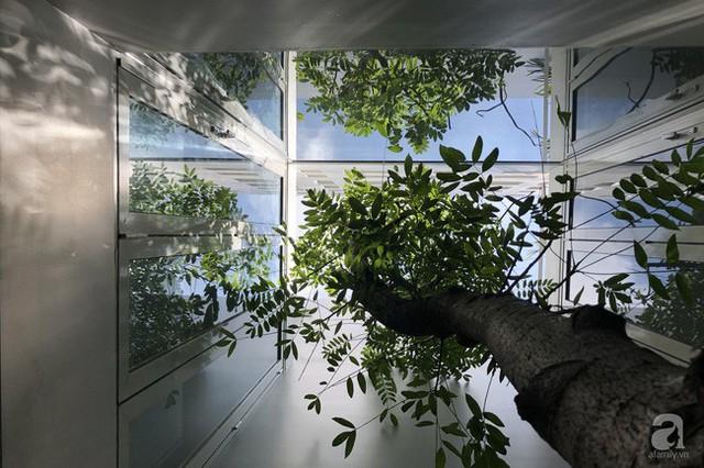Nhờ thiết kế 300 ô cửa sổ, ngôi nhà hướng Tây ở Nha Trang luôn ngập tràn ánh sáng và gió mát - Ảnh 6.