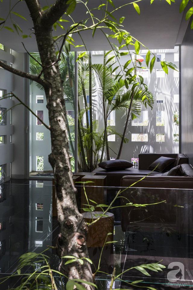 Nhờ thiết kế 300 ô cửa sổ, ngôi nhà hướng Tây ở Nha Trang luôn ngập tràn ánh sáng và gió mát - Ảnh 10.