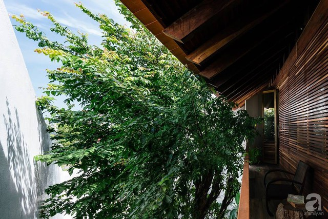 Ngôi nhà gỗ mang hơi thở đồng bằng Bắc Bộ tách biệt tiếng ồn, khói bụi dù xây giữa lòng thành phố Nha Trang - Ảnh 26.